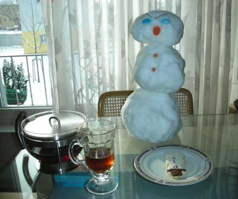 at home with snowman